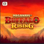 Online Slots Megaways Buffalo Rising