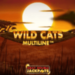Wild Cats multiline progressive jackpots and daily Doubles at Megaways