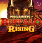 Buffalo Rising slot game at William Hill Casino online
