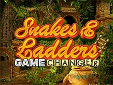 snakes-and-l-g-changer-slots-game Aspers Casino