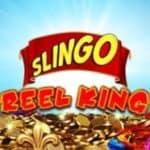 Reel King Slingo, slots vs Bingo at Gala online Casino 2021