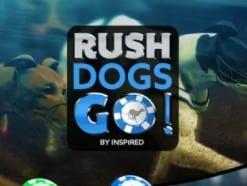 Rush Virtual Dog track racing at Mrt Green casino virtual sports section 2021-2022